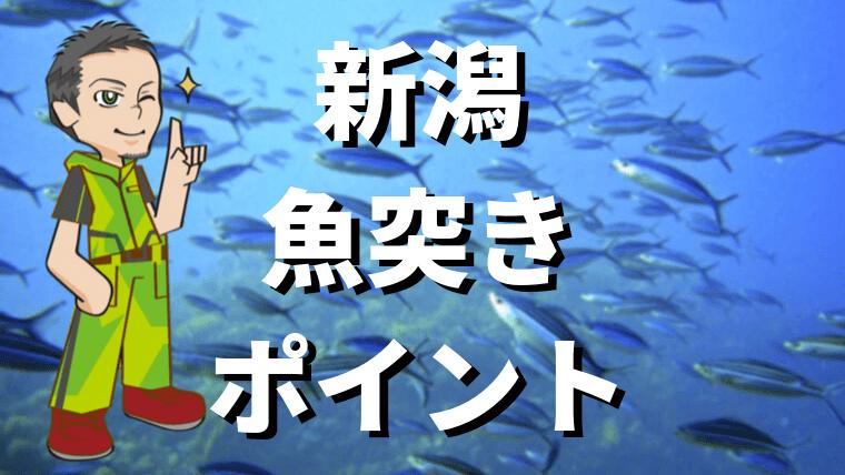 新潟魚突きポイント